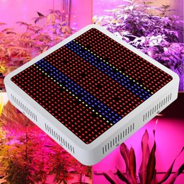 Wholesale Full Spectrum w LED Grow Light Red Blue White UV IR AC85 V SMD5630 Led Plant Lamps Best For Growing and Flowering
