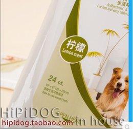 Wholesale Antibacterial wipes clean deodorant antibacterial dog antiseptic wipes dog towel pet supplies