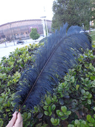 Wholesale_100 pcs a lot 6-24inch black Ostrich Feather Plume for Wedding Centerpieces table decoration