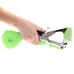 Wholesale Agriculture Tape Tool Hand Tying Machine for Fruit Vegetable Vine Tomato Metal Plants Tools New order lt no track