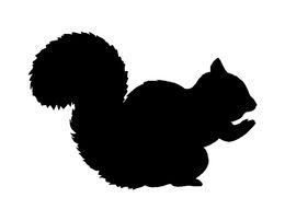 Wholesale Car Stickers Squirrel Sticker Car Window Decal Cute Girl Love Pet Animal Acorn Nuts Tree Fun