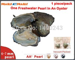 Wholesale 100pcs Individually Vacuum Packed Natural Pearl in Oyster One mm Fresh Water Round Pearl Fresh Oyster with Pearls