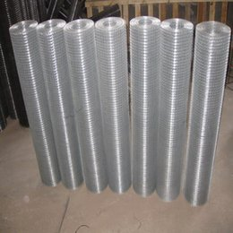 China Stainless Steel Welded Wire Mesh, Galvanized Welded Wire Mesh Free sample factory since 1998