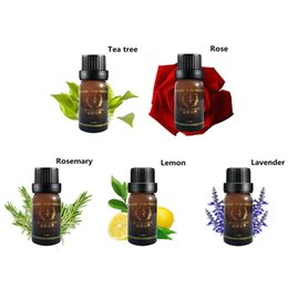 Wholesale 10g ml Pure Lemon Lavender Tea Tree Rosemary Rose Essential Oils Pack For Aromatherapy Massage Spa Bath order lt no tra