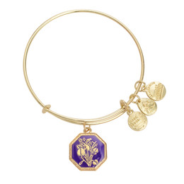 Wholesale Alex Ani Seduced By Innocence Violet Gold and Silver Plated Charm Bracelets Expandable Bangles New Fashion Jewelry AN21