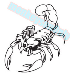 Wholesale car decals stickers scorpion cm x cm car motorcycle applique car motorcycle waterproof vinyl decals