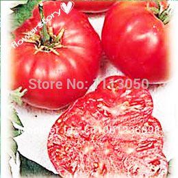 Wholesale 100pcs TOMATO SEEDS Watermelon Beefsteak Tomato seeds Organic Food Bonsai plants