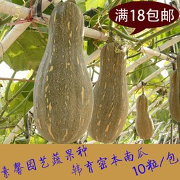 Wholesale 18 yuan shipping balcony potted vegetable garden vegetables close of the pumpkin seeds pumpkin seed King Long