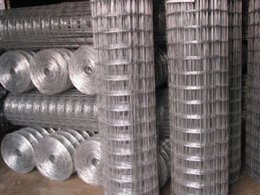 Low price Stainless Steel Welded Wire Mesh, Galvanized Welded Wire Mesh Free sample factory since 1998