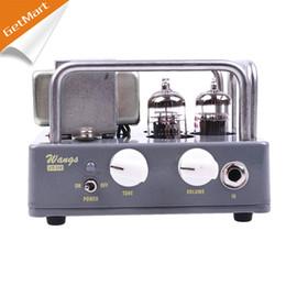 Wholesale Electric All Tube Guitar Amplifier Head Biyang Wangs VT H AMP Head Adjust Volume And Tone