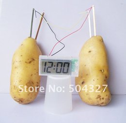 Wholesale Pieces SCIENCE MUSEUM Digital Potato Clock Green Science Vegetable Power