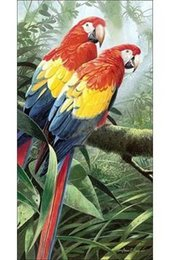 Animal oil painting Birds Gift&Free Shipping Birds-003