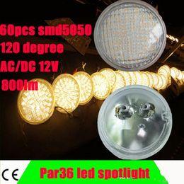Wholesale led blubAC DC V LED Landscape Lighting PAR36 led W PAR Lamp spotlight SMD5050 waterproof IP65 degree beam angle LM bright