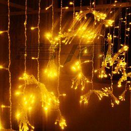 3 * 1 M 150LED curtain light LED lights flashing all over the sky star light string of wedding garden decorative Christmas lights
