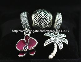 S925 Sterling Silver Charms and Murano Glass Bead Set with Charm Box Fits European Pandora Jewelry Charm Bracelets-Flowers Set