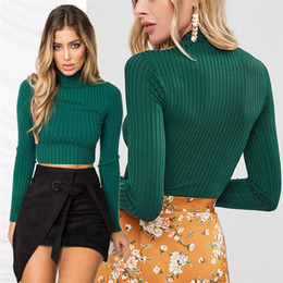 Women Casual Slim Solid Ladies Cotton Ribbed Turtle High Roll Neck Long Sleeve Top Regular Size Pullover Polyester Tees