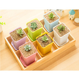 Wholesale Bonsai Planters Plastic Table Mini Succulents Plant Pots and Plate Gardening Vase Square Flower Pot Colorful