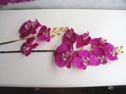 [Specials] whole leaves and purple Phalaenopsis Phalaenopsis simulation flower decorative flowers