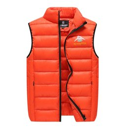 Fall-2016 collar eiderdown cotton leisure youth vest Autumn and winter to keep warm fashion outdoor sports vest