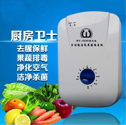 Wholesale 220v health life water ozonizer device food vegetable sterilizer water treatment ozone generator air water purifier purification