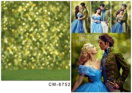 5*6.5FT Cinderella Backgrounds Photography Backdrops Broken Halo Fotografia Thin Cloth Vinyl Backdrops For Photography Hot 2016