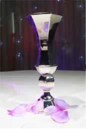 Silver Metal Flower Vase for Decoration 111