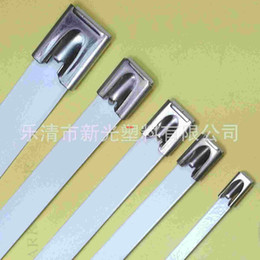 Wholesale Our professional health package plastic cable ties Stainless steel cable Stainless Pipe positioning tablets consulting