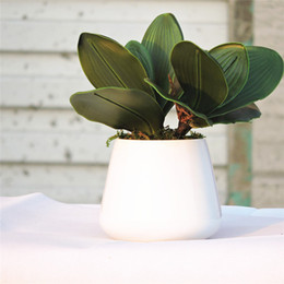 25cm Real Touch 20pcs x 5 Leaf Artificial Orchid Flower Plant Wedding Home table centerpieces Decor Fake Foliage Green FL601