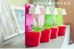 Wholesale New Arrival Lovely Rainy Pot Wall hanging Cloud Flower pot Home Balcony Decoration DIY