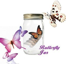 Wholesale Sound Activated Animated Electronic Senor Monarch Swallowtail Butterfly In Jar arz99