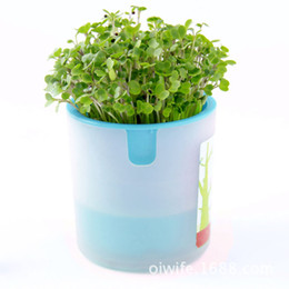 Wholesale E park ecological activated carbon aerobic creative office storage potted plants hydroponic custom corporate gifts