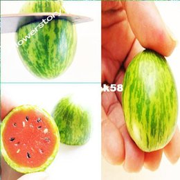 Mexican Miniature Watermelon 50 Seeds -Melothria scabra Free Shipping