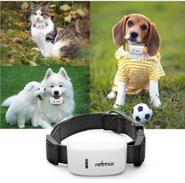 Wholesale Mini Pet GPS Tracker with Collar Waterproof Real Time Locator Rastreador Localizador Chip for Pets Dogs Perro Pigs Tracking Geofence