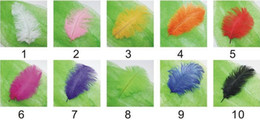 Wholesale 100pcs lot 8-10 inch 20-25 cm black ostrich feathers for wedding decor craft
