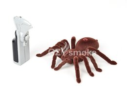 Wholesale Cute Sunlight New Toy RC Mini Spider Animal Toys for Children Birthday Gift