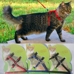 Wholesale Cats belts and belt Hot tricolor nylon products of animal traction harness with adjustable pet cat kitten Halter Neck