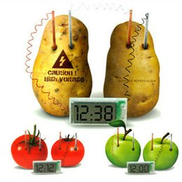 Wholesale Potato Fruit Clock Science Experiment Lab Gadget Gizmos Eco Friendly Great Educational Toy for Kids Christmas Gifts DHL