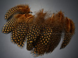 Brown Guinea hen feather Saltwater Hackle Fly tying material Hand Selected ;over 9 cm 100 pcs; C20208
