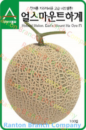Free shipping 10g around 400pcs of seeds in original package very sweet melon seeds, Korea style hami melon seeds