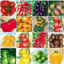 Wholesale 100pcsVegetables and fruit seeds Dwarf tomato seeds Many kinds of hybrid Bonsai plants Seeds for home garden