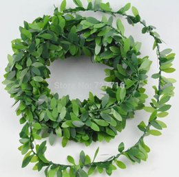 Wholesale Baby Leaf Boxwood Garland ft Wedding Party Packaging Garden Party Vintage Party Decorations Shabby Chic