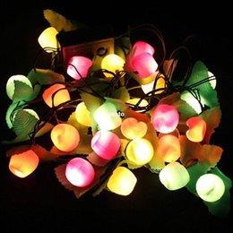 Slaes 3m Room Decor Fruit Changing LED Lamp Night Light Kids Children XMAS Gift #B591