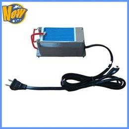 Wholesale US Plug Portable Ozone Generator g Long Life for Chicken House Disinfection Discounted Shipping