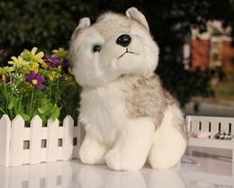 Свободный материал собаки Онлайн-Смазливая собачка плюшевые игрушки, чучела животных toyshobbies 7 дюймов 18см Фаршированные плюшевые животные Добавить в избранное Категории Бесплатная доставка
