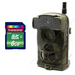 Wholesale Ltl Acorn WMG HD MP NM No Glow IR MMS Cellular Wide Angle Trail Camera tvl Free GB