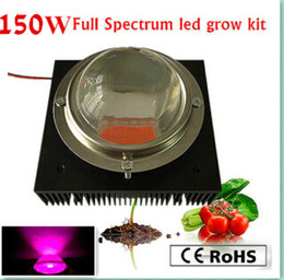 Wholesale Actual Power W diy led grow kit W led grow light chip power supply big heat sink fan and driver big lens reflector