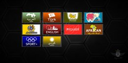Wholesale Renew Tiger arabic iptv box royal iptv subscription only tiger z280 z400 z460 z240 e400 royal iptv code year