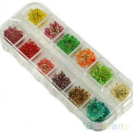 60pcs Real Dry Dried Flowers Nail Art Tips Stickers Manicure Decoration DIY nail gel B02 1MJ8