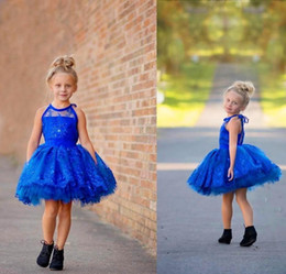 Beautiful Royal Blue Lace Flower Girls Dresses for Wedding Party Halter Short Pageant Princess Cheap Gowns