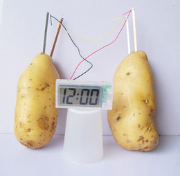 Wholesale Potato Fruit Clock Science Experiment Lab Gadget Gizmos Eco Friendly Great Educational Toy for Kids Christmas Gifts By DHL Free